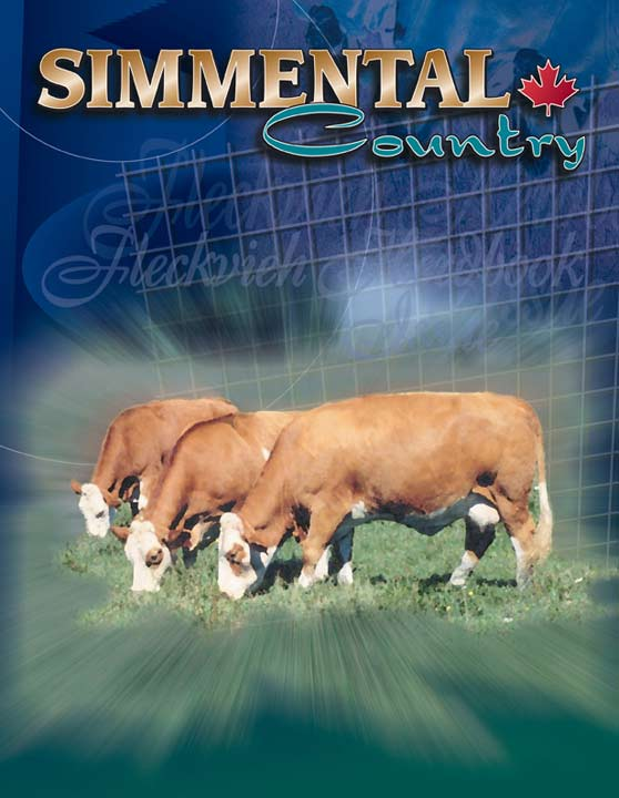 Simmental Magazine July Cover